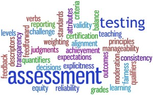 """Wordle with about thirty words linked to assessment, such as """"grades,"""" """"learn,"""" """"expectations"""", etc."""