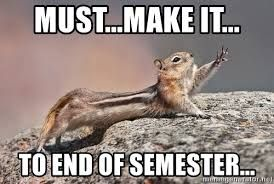 """Squirrel, stretched out. Text says: """"Must...make it...to end of semester"""""""